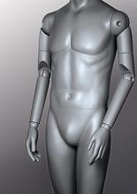 Articulated Mannequin Arms image