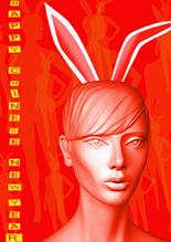 Chinese New Year 2011 Year of the Rabbit image
